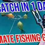 ULTIMATE Fishing Guide for R5 Catch in 1 DAY! Genshin Impact