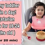 What my toddler eats in a day| Healthy vegetarian recipes